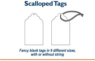 Scalloped Tags - Blank